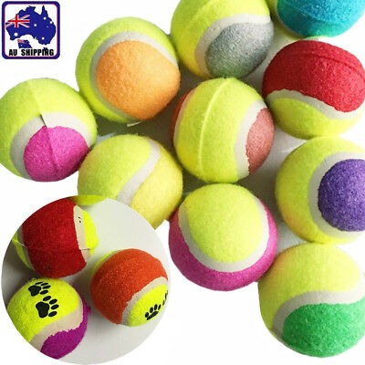 50 Tennis Balls for Kids Dogs Backyard Games 6.3cm Gift Toy Play PTBAL0911x50