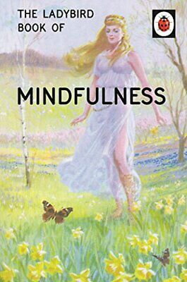 The Ladybird Book of Mindfulness (Ladybirds for Grown-Ups) by Morris, Joel Book