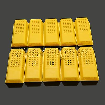 10Pcs Beekeeper Queen Bee Cage Plastic Travelling Moving Catcher Beekeeping Tool