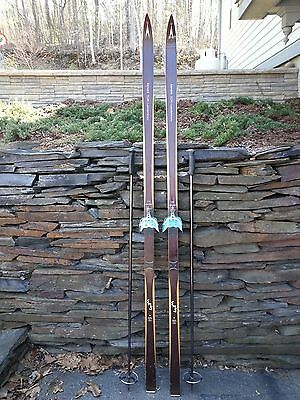 "VINTAGE HICKORY Wooden 75"" Skis Has BROWN Finish ASNES TUR LANGRENN"