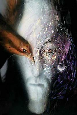 Absolute Sandman: Vol 01 by Neil Gaiman (English) Hardcover Book Free Shipping!
