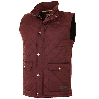 58% OFF RRP Regatta Mens Rigby Thermo-Guard Water Repellent Gilet Bodywarmer