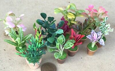 1:12 Plants In Ceramic Pots Dolls House Miniature Handmade Garden Accessory