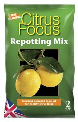 Citrus Focus Repotting Mix 2 Litre Garden & Patio Citrus Focus Repotting Mix Is