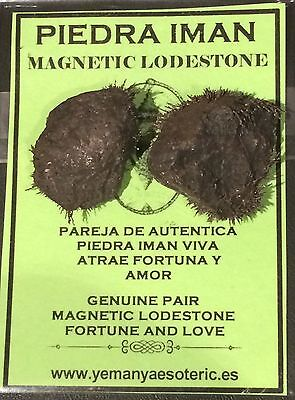 Genuine Pair Magnetic Lodestone • Fortune & Love - Piedra Iman Pareja Viva