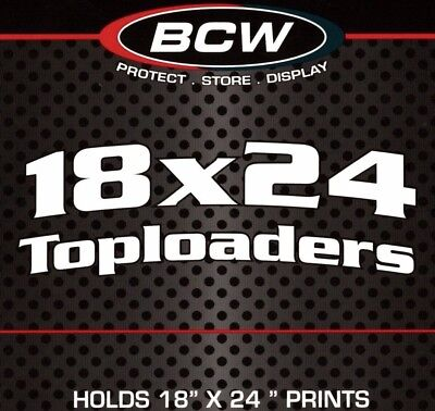 5 BCW 18X24 Top Load Holder Print Poster Toploaders  Protector Display Storage
