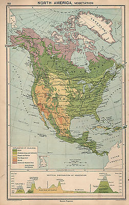1931 Map ~ North America Vegetation ~ Vertical Distribution Mountains