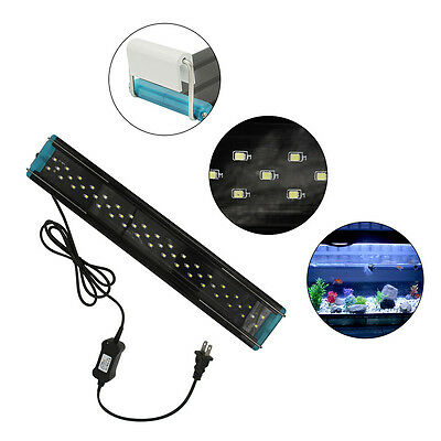 4W 6W 8W Adjustable Aquarium Fish Tank LED Light Over Head White & Blue Model