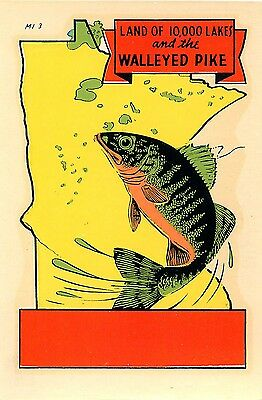 Minnesota Walleyed Pike Vintage Water Slide Decal Tourist Luggage Label