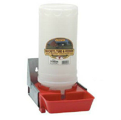 1 Gallon Farm Grade Waterer With Mount Tray For Baby Pig Piglet Hog Miller Bpw4