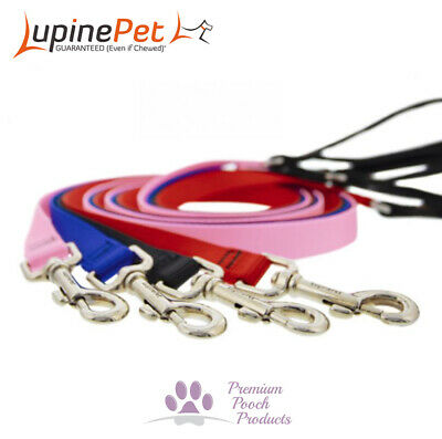 Lupine Dog lead 12mm x 1.8m (6ft) Nylon cat puppy small dog leash - Var colours