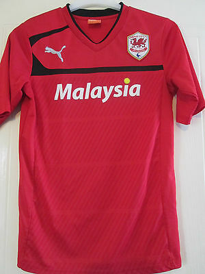Cardiff City 2012-2013 Home Football Shirt Size Small Adult /40287