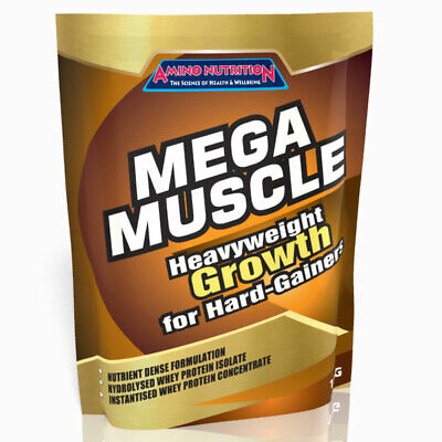 1Kg Mass Gainer Weight Gain Whey Protein / Mega Muscle