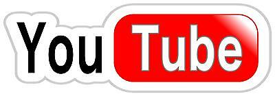 1x 120x40mm approx you tube logo sticker