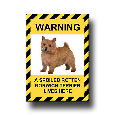 NORWICH TERRIER Spoiled Rotten FRIDGE MAGNET New DOG