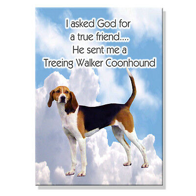 TREEING WALKER COONHOUND True Friend From God MAGNET