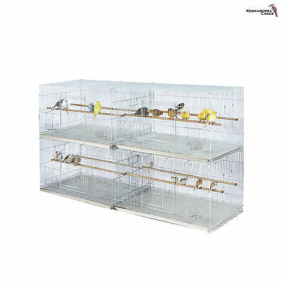 Kookaburra Willow Large Breeding Cage - Finch Canary Budgie Cockatiel Etc X4