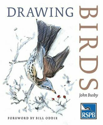 Drawing Birds (RSPB) by Busby, John Paperback Book The Cheap Fast Free Post