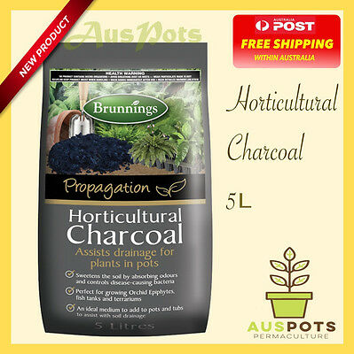 Horticultural Charcoal -  Excellent for Terrarium or Orchids.
