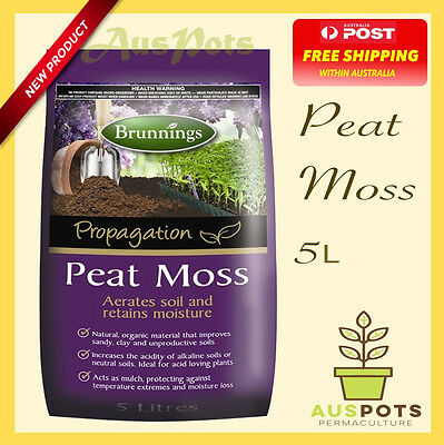 Peat Moss -  Ideal for propagation, hydroponics and pots.