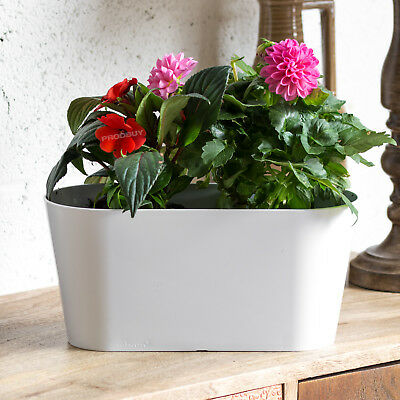 Set of 3 White Oval Indoor Plant Pot Covers Planters Herb Troughs Window Boxes