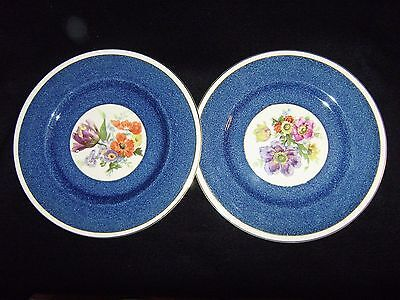 2 BURLEIGH Floral Pattern 10 1/2 Inch Plates #5820