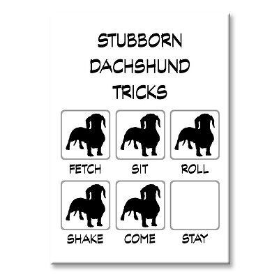 DACHSHUND Stubborn Tricks FRIDGE MAGNET Steel Case Funny DOXIE