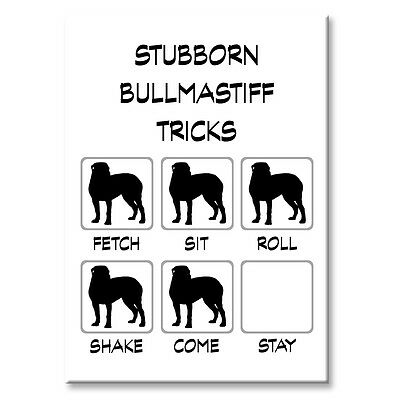 BULLMASTIFF Stubborn Tricks FRIDGE MAGNET Steel Case Funny