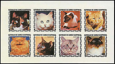 Equatorial Guinea 1970's Cats MNH Imperf Sheet #C29000
