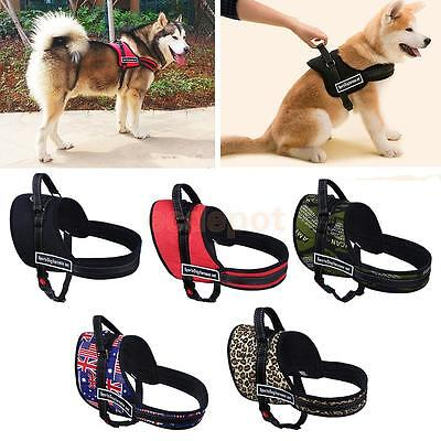 Pet Adjustable Harness Large Dog -Stop Pulling Training Chest Strap Collar XS-XL