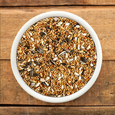 Wild Bird Seed Mix, 250 gms,Year Round, Fast FREE Shipping, Suits all feeders.