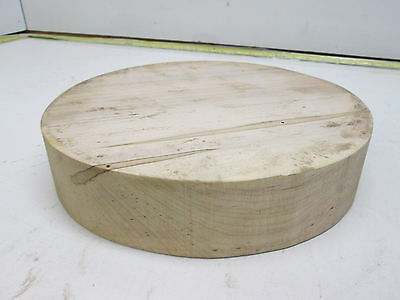 Wormy Maple Wood Bowl Blank (2'' x 9'')