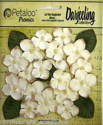 CREAM 18 HYDRANGEAS Paper Flowers 25-35mm & 6 Leaves 25x30mm Darjeeling Petaloo