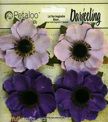 White Diy 4 Canvas Anemone Flowers 60mm With Black Centre Darjeeling