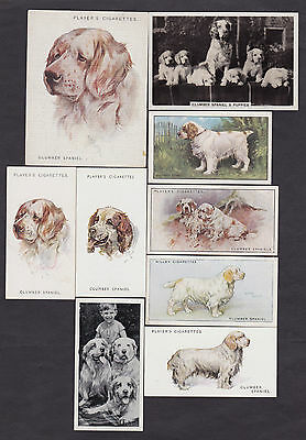Lot Of 9 Different Vintage CLUMBER SPANIEL Tobacco/Tea Dog Cards