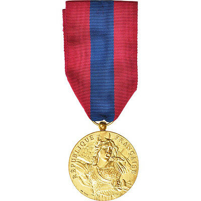 Decorations, France, Médaille de la Défense Nationale, Medal #408436