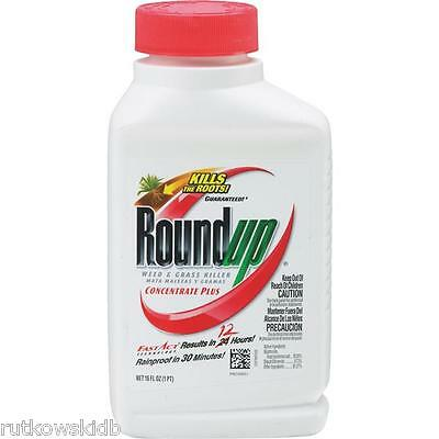 1-PINT Roundup Weed & Grass Killer Concentrate Plus