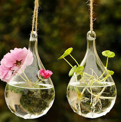 Hanging Glass Vase Flower Plant Decor Container Home Pot Wedding Clear Garden