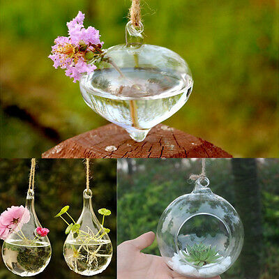 Top Quality Flower Hanging Vase Planter Terrarium Container Glass Wedding Decor