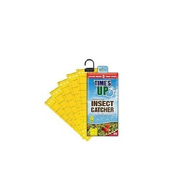 Times Up Greenhouse Insect Catcher x 5 Traps Garden Greenhouses Irresistible