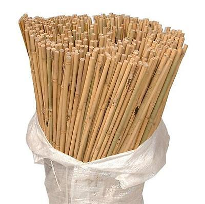 50 x 3ft Heavy Duty Bamboo Garden Canes Strong Thick Quality Plant Support