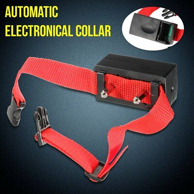 Dog Collar Electric Shock Training No Barking Control Anti Bark Pet Trainer New