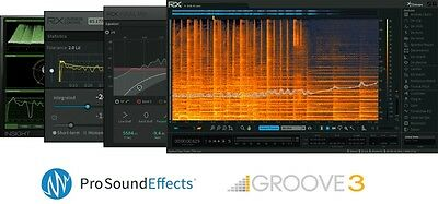 IZOTOPE RX POST PRODUCTION SUITE RX5 Advanced, RX Final Mix, RX Loudness Control
