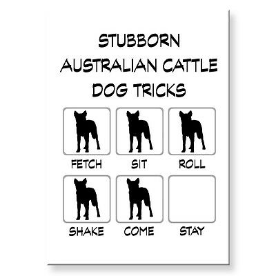 AUSTRALIAN CATTLE DOG Stubborn Tricks FRIDGE MAGNET Steel Case Funny