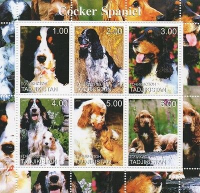 Cocker Spaniel Dog Canine Animal Tadjikistan 2000 Mnh Stamp Sheetlet