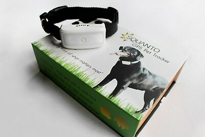 GPS Tracker for DOGS = INSTANTLY Locate your dog if they get lost or run off