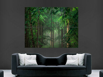 Forest Trees Poster Nature Large Giant Wall Picture Print