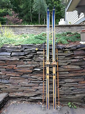 """VINTAGE HICKORY Wooden 78"""" Skis Has BLUE and Wood Tone Finish BONNA MODELL 1800"""