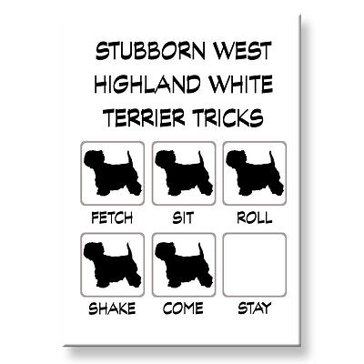 WEST HIGHLAND WHITE TERRIER Stubborn Tricks FRIDGE MAGNET Steel Case Funny