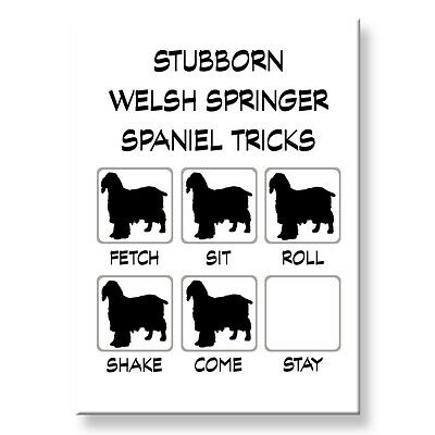 WELSH SPRINGER SPANIEL Stubborn Tricks FRIDGE MAGNET Steel Case Funny